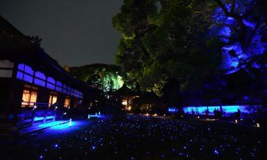 青蓮院門跡ライトアップ