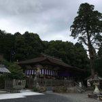 競馬ファンの聖地・栗東の総社「大野神社」。競馬と嵐がコラボしているお社です