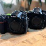 Nikon D500購入から半年。D300との違いをまとめてみた