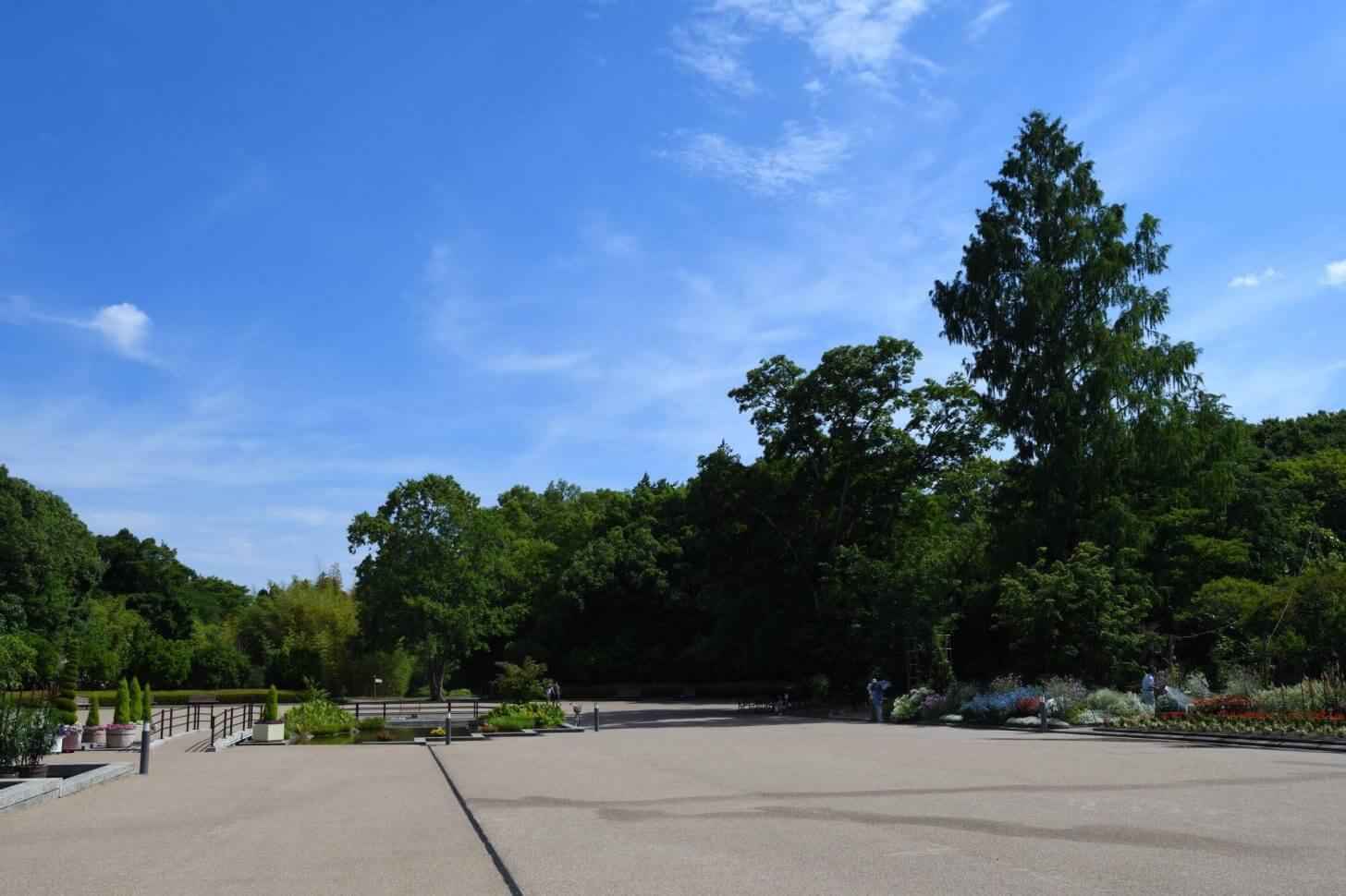 ガラガラの京都府立植物園