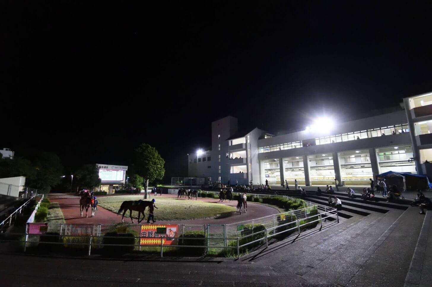 夜の高知競馬場のパドック