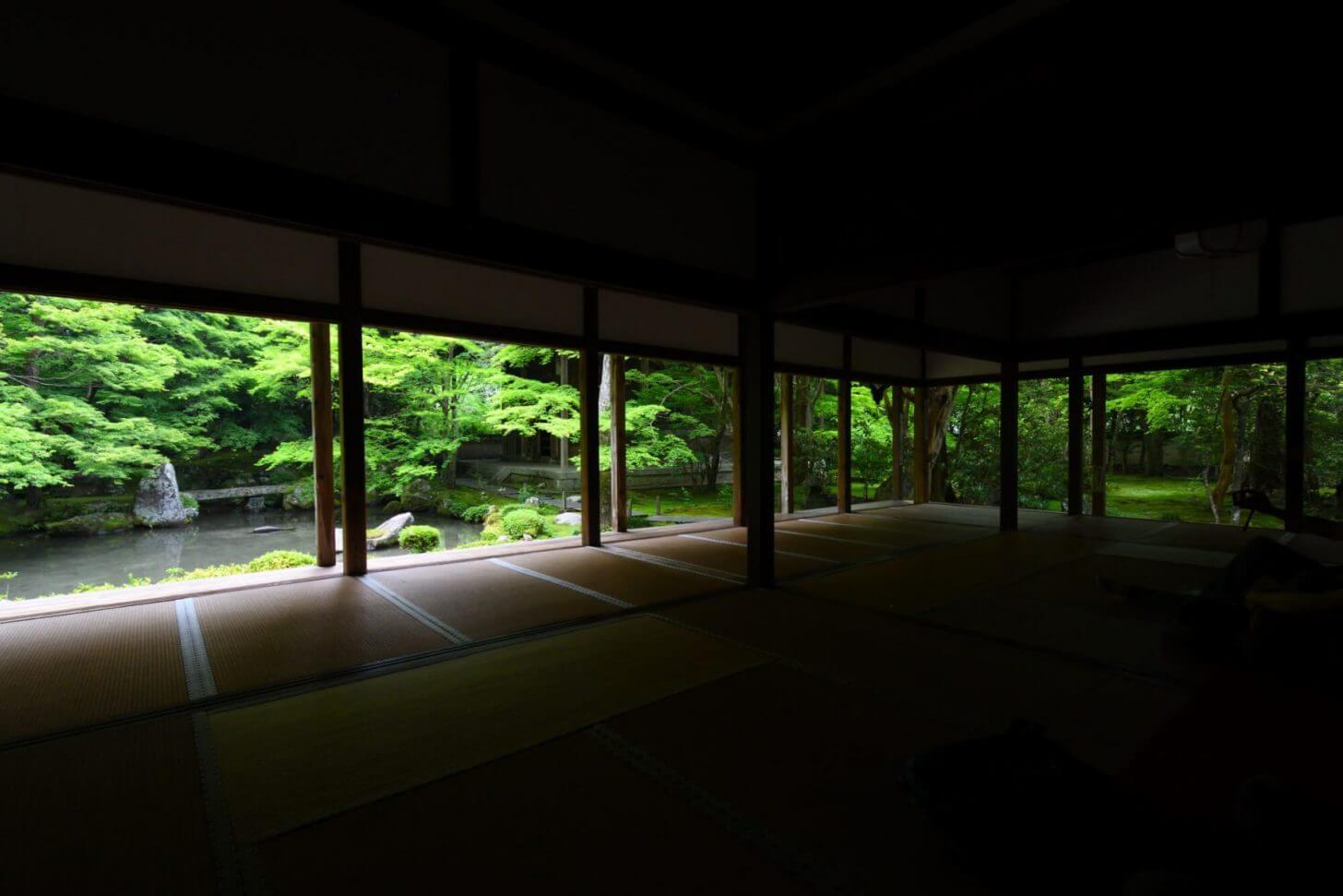 蓮華寺の青もみじを端から超広角で