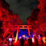 下鴨神社 糺の森の光の祭 2018年開催のまとめ【写真あり】
