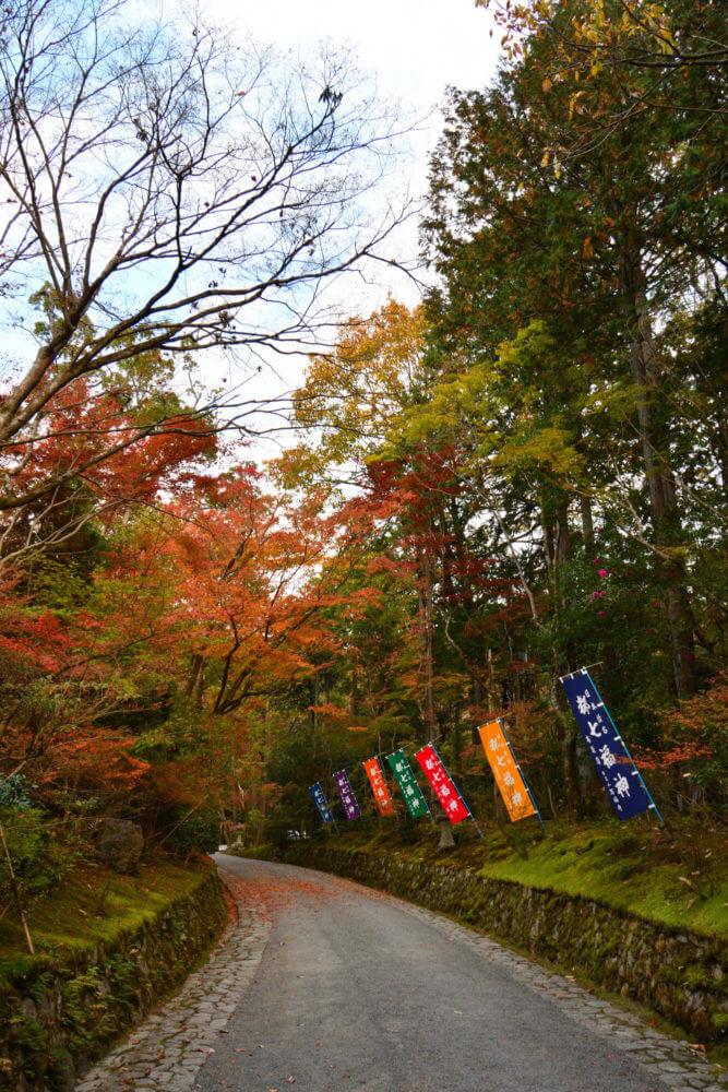赤山禅院 参道の紅葉