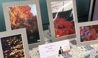 京信下鴨支店さんにて写真展開催中