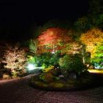 曼殊院紅葉ライトアップ・淡い光に照らされた枯山水庭園が見事(2018.11.27訪問)【Nikon D500で撮る】
