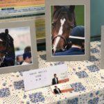 【懲りずに告知】写真展続報。後半の馬の写真の展示が始まりました!【全写真紹介】