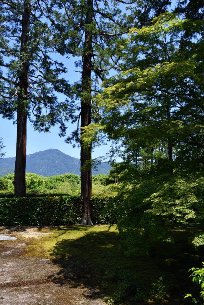 京都洛北・圓通寺の庭園