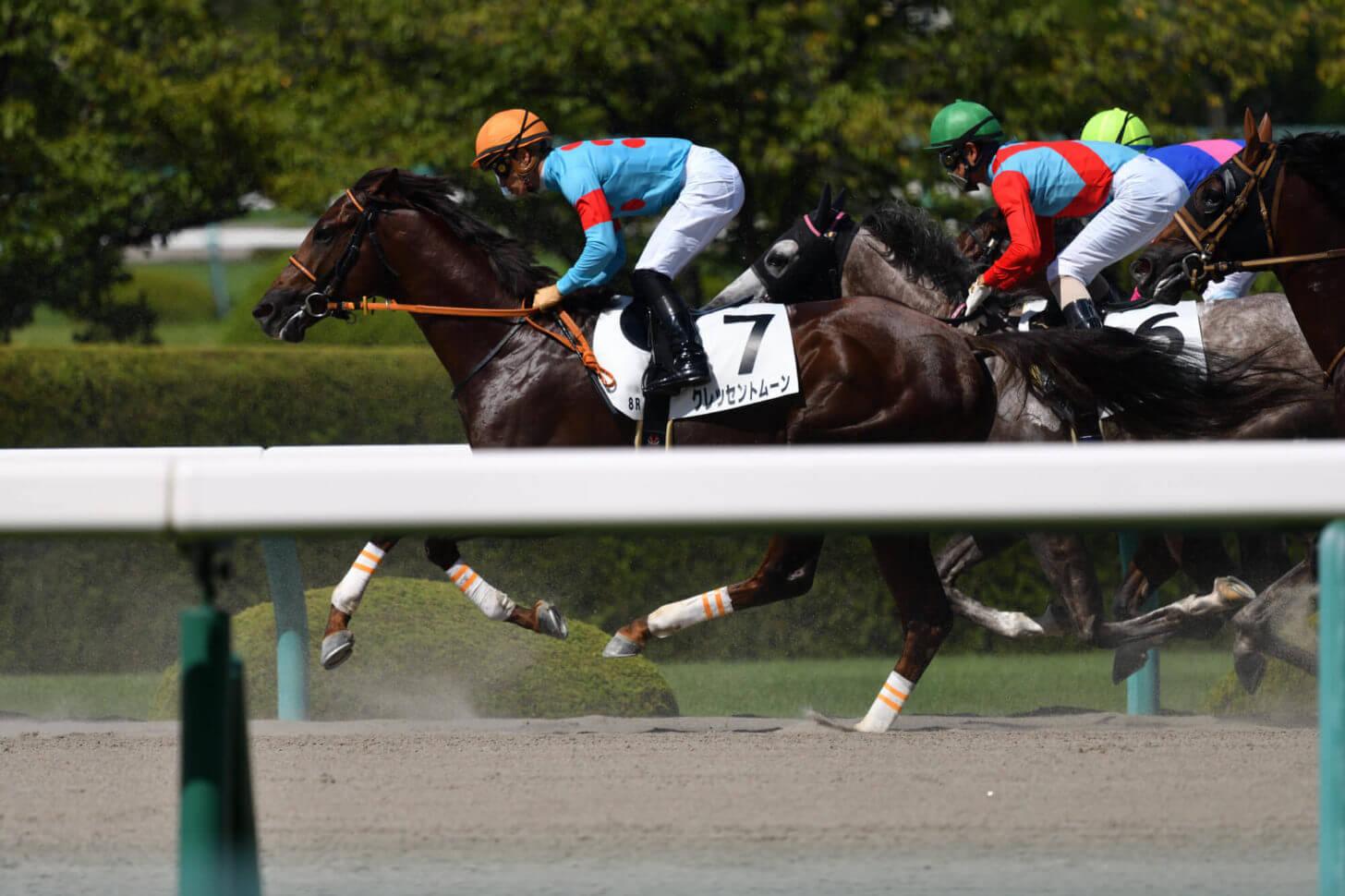 クレッセントムーン6戦目レース写真