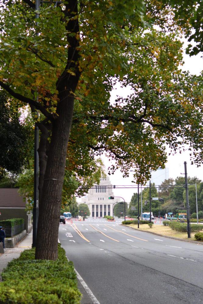 遠くから見た国会議事堂