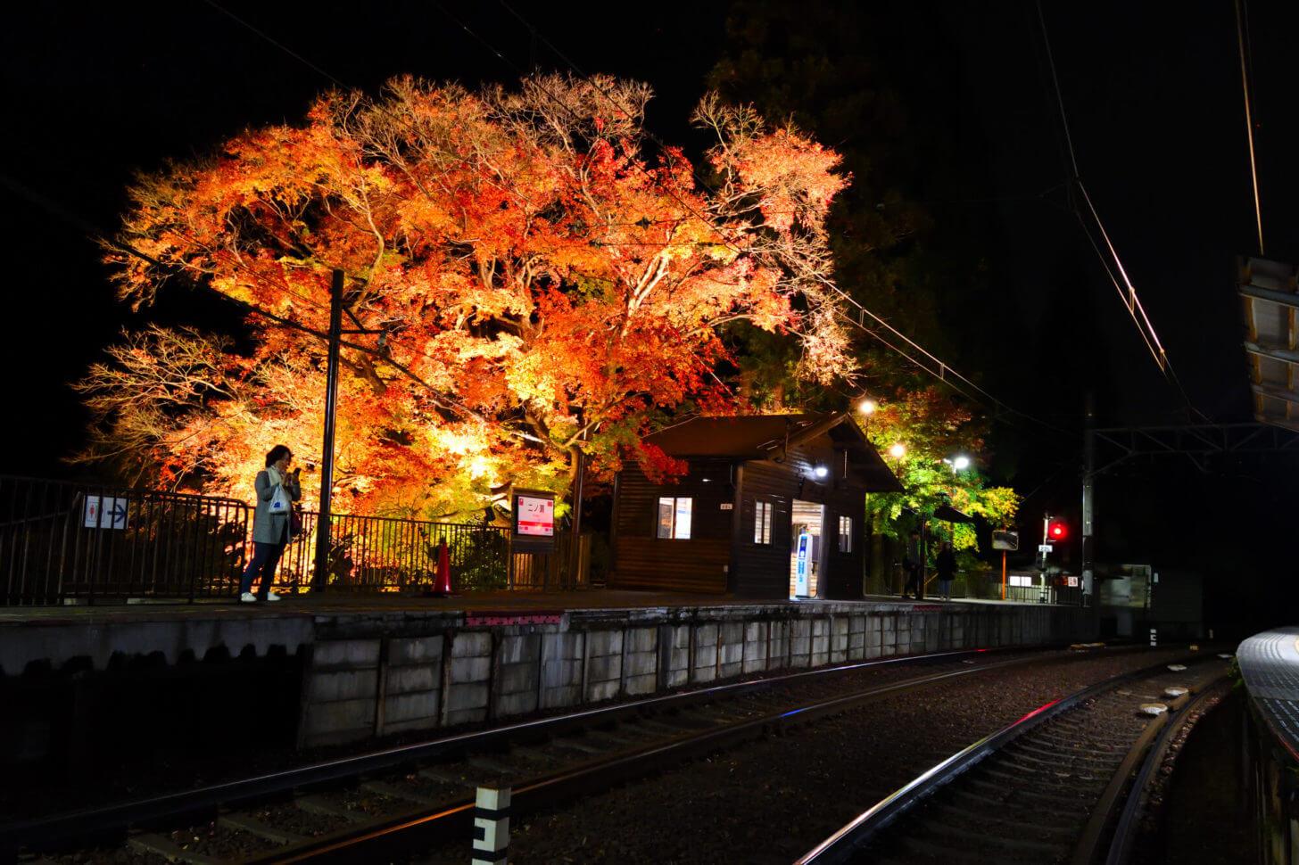 叡山電車鞍馬線・二ノ瀬駅紅葉ライトアップ