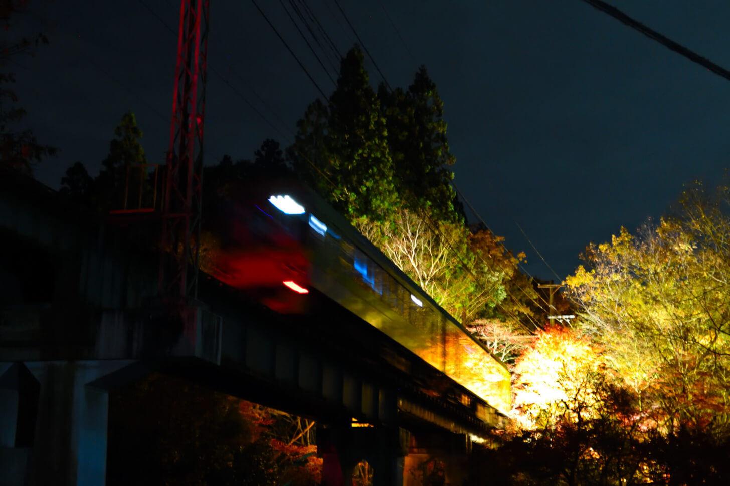 もみじのトンネル北側の鉄橋を走る叡山電車
