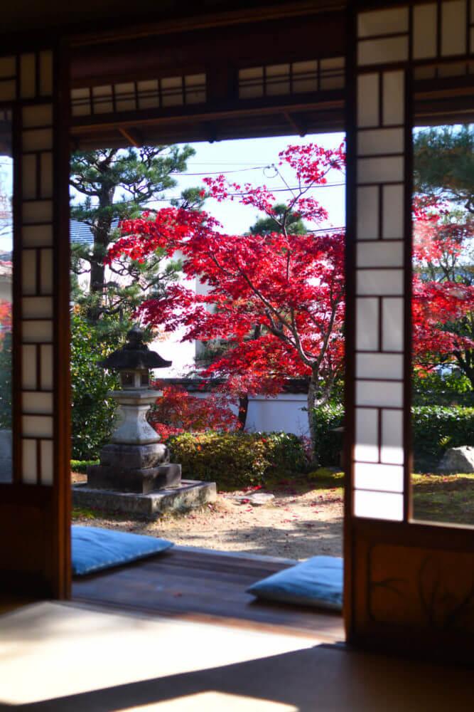 岩倉具視幽棲旧宅 鄰雲軒から障子戸越しに見る紅葉